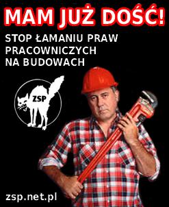 zspcatwre.png